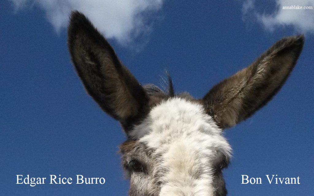 Edgar Rice Burro on Covid-19 and Physical Distancing (on World Donkey Day)